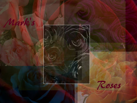 Mark's Roses ID