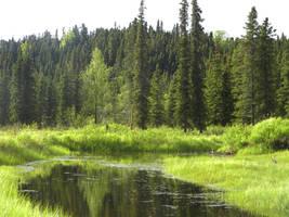 Alaska Lake 10 by prints-of-stock