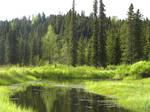 Alaska Lake 10