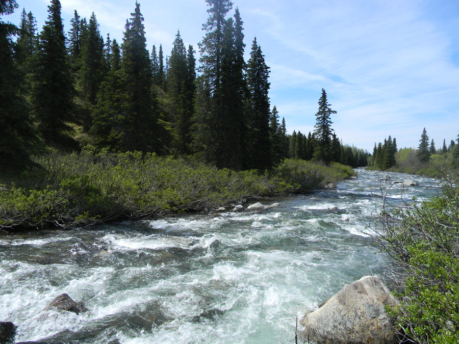 Alaska River 20 by prints-of-stock