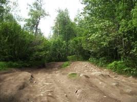 Alaska Path 1