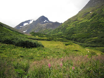 Crow's Pass Mountains Field 4 by prints-of-stock