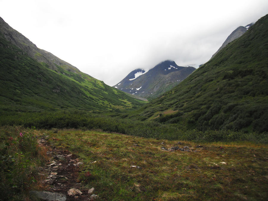 Crow's Pass Mountains Field 7