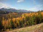 Fall Landscape 1