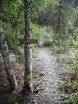 Crow's Pass Path- Icicle Creek