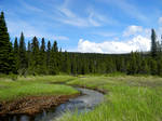 Alaska River 30