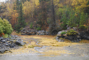 Muddy River 2 by prints-of-stock
