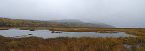 Marsh Panorama 2 by prints-of-stock