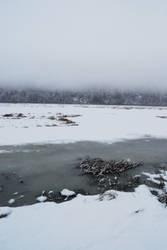 Winter Lake 4