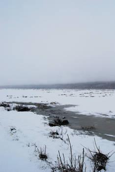 Winter Lake 7