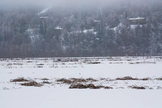 Winter Lake 9