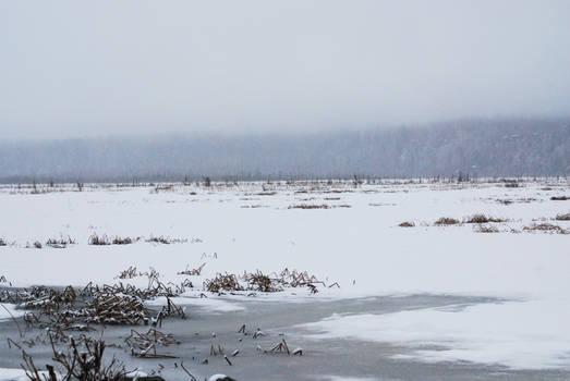 Winter Lake 11