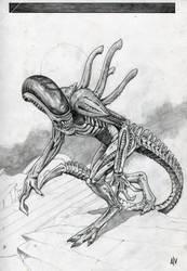 TG Alien by TGnow