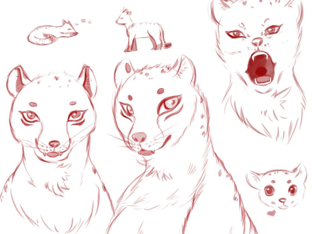 Cheetah Sketch by Mitsuniko
