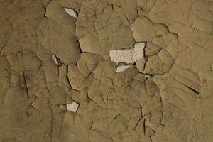 Cracked by mad-texture