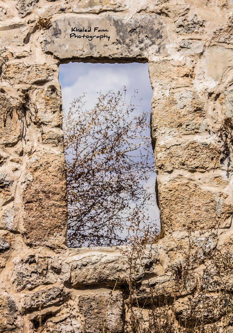 Qibya by KhaledFanni