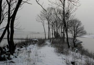 Winter in Tiel