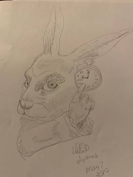 Alices rabbit