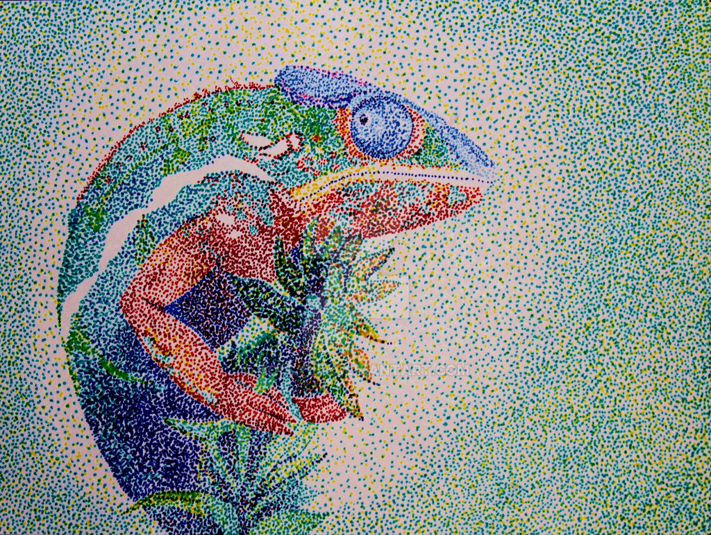 Chameleon In Pointillism 489328377 on Animal Pictures For Kids To Draw