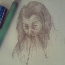 Gandalf - O cinzento by calebex