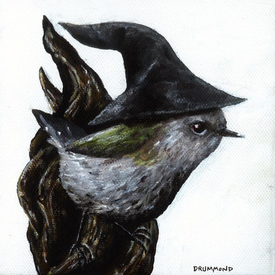 Gandalf the Grey Warbler by maverickcarter