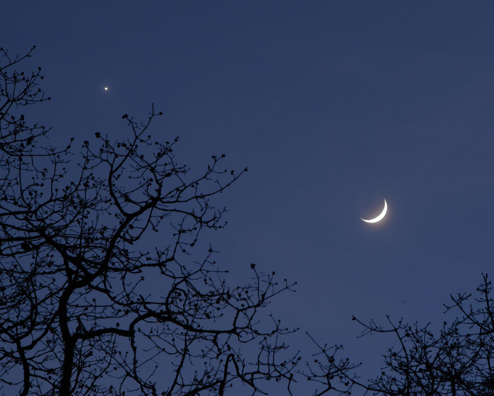 Enchanted Moon by BWilliamWest
