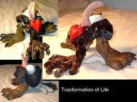 Transformation of life