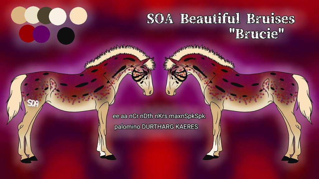 N5102 - SOA Beautiful Bruises AKA Brucie