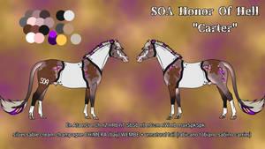 N4255 - SOA Honor Of Hell AKA Carter