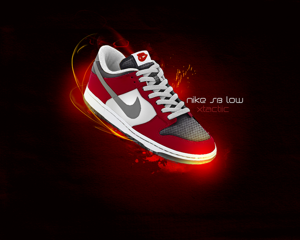 Nike Sb Fc Shoes