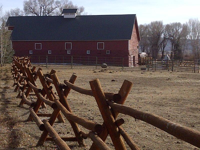 Fence Lines 11 by cmdrtekk