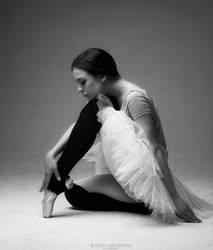 Swan by karen-abramyan