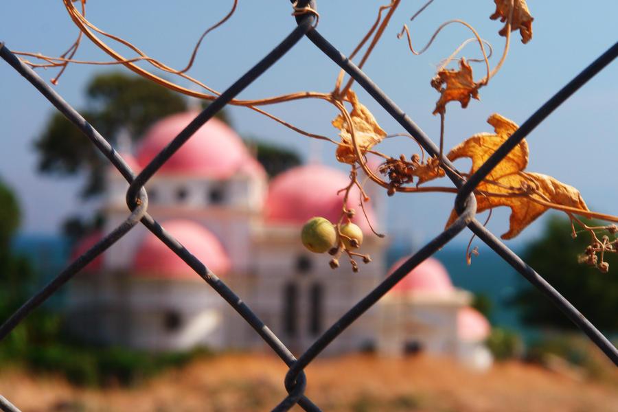 Heaven Fence