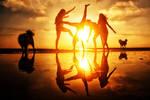 Sun Dancers