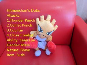 Hitmonchan's Profile by NovaKaru