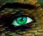 Naga Eye