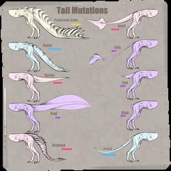  SABEXEN  Tail Types