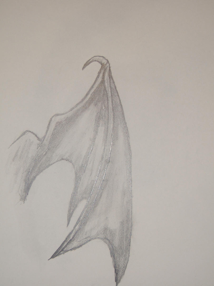 Bat Wing By Emokins2012 On DeviantArt