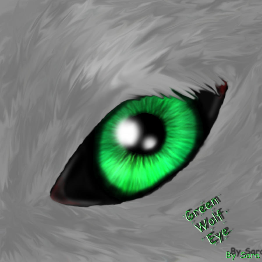 Wolf Eye By Saraninja Wolf Eye By Saraninja How To Draw