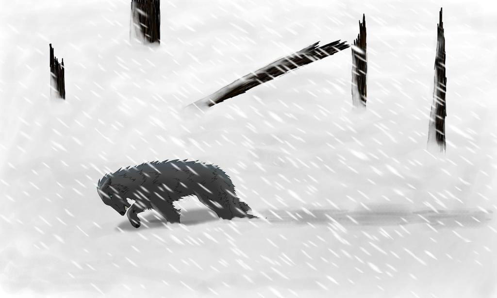 Wolf in snowstorm by saraninja