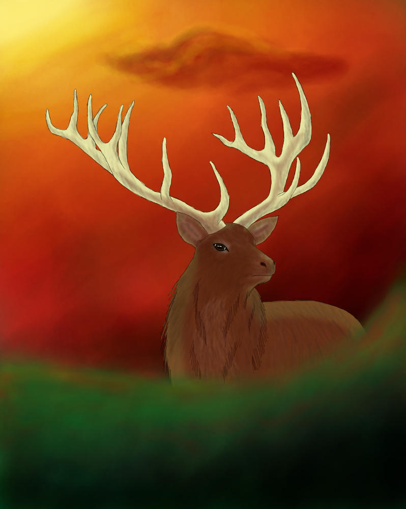 Red Deer by saraninja