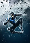 NightWing Blue