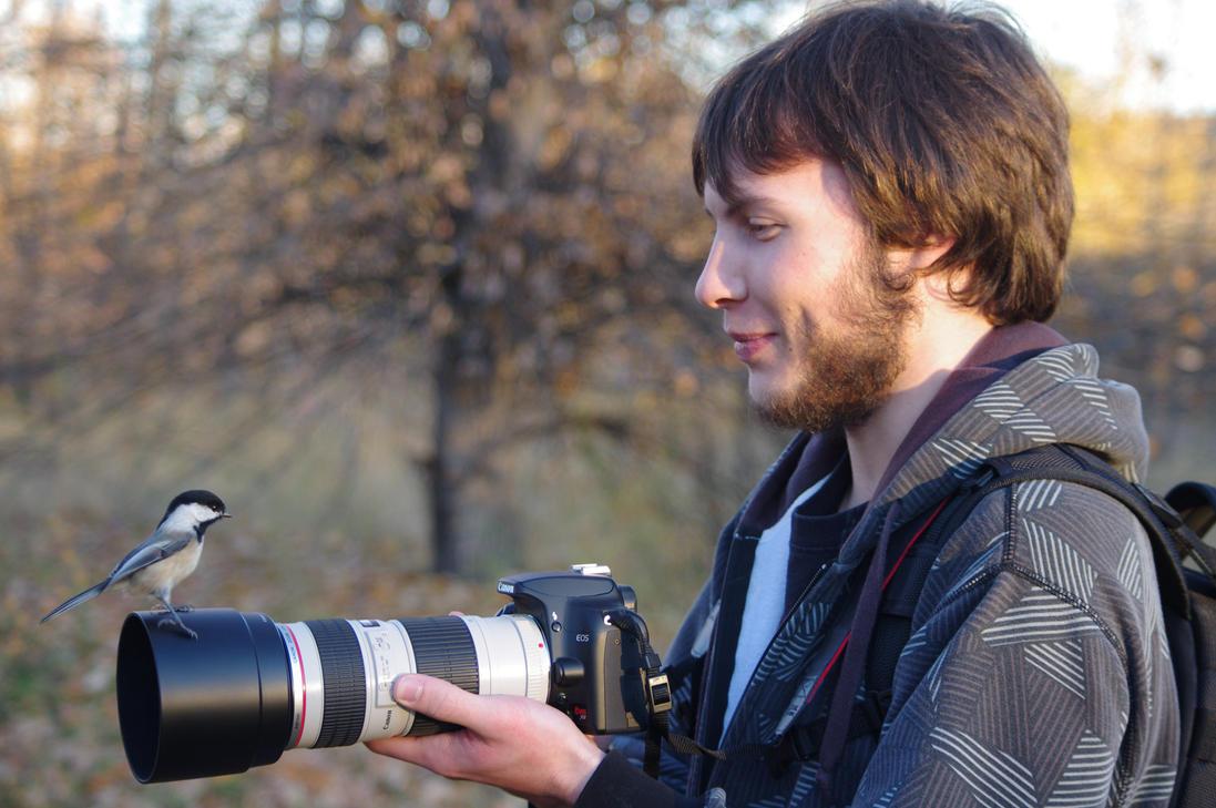 Camera Bird by Kasionn