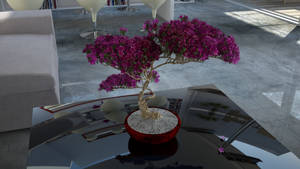 Home Bonsai by KRYPT06
