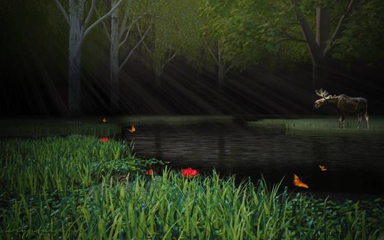 Elk's River