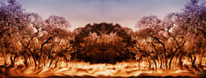 Ground of Fire