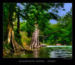 Guadalupe River Texas