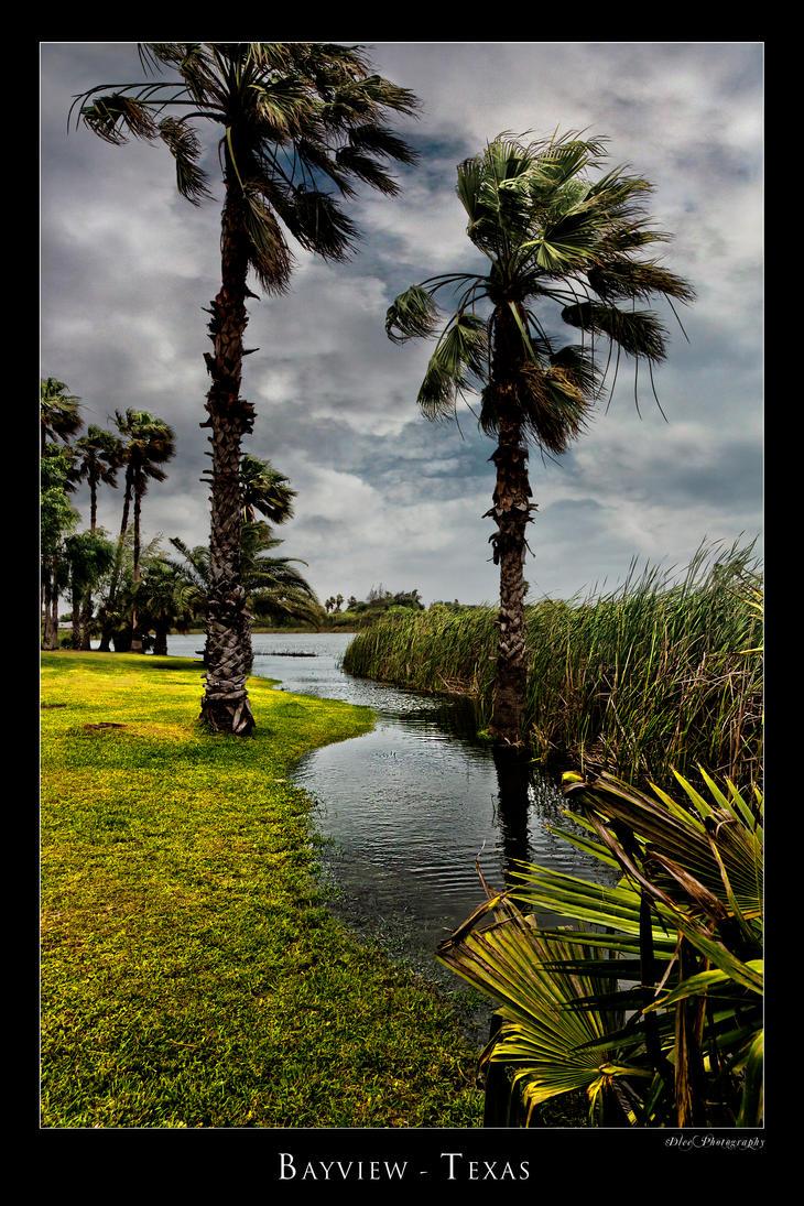 Palms Bayview Texas by DleeKirby