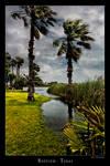 Palms Bayview Texas