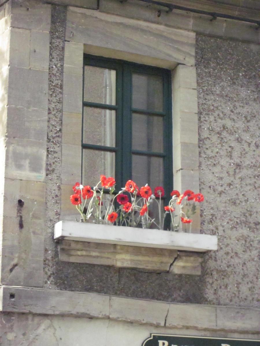 Prozori koji govore - Page 3 Flower_by_saratux-d3iv7pw
